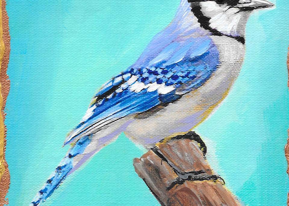 Blue Jay Art | Channe Felton Fine Art