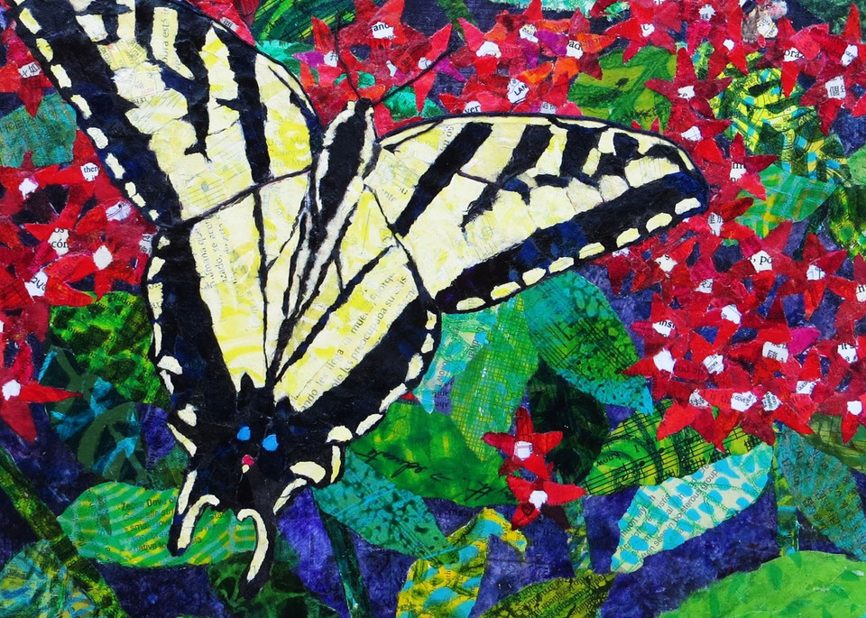 Catch A Tiger Swallowtail  Art | Poppyfish Studio