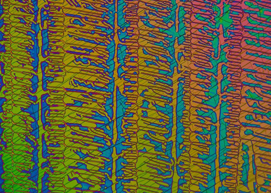Hendrix Connection (Caffeine Crystals) Art | Carol Roullard Art