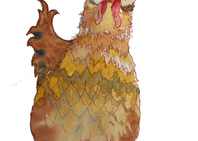 Chicken Art | Color Splash Ranch