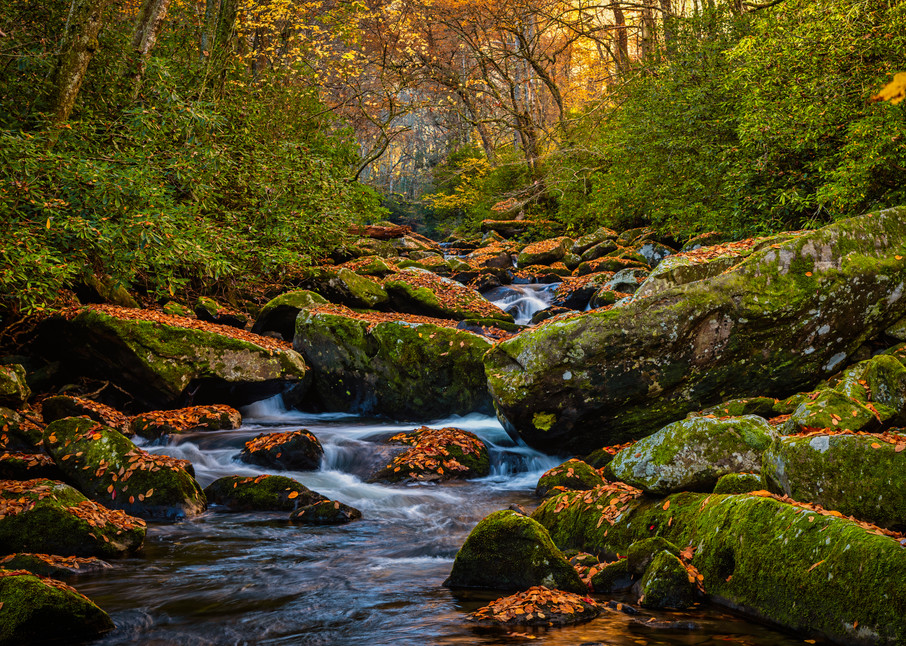 Crowned Santeelah Creek - Smoky Mountains autumn fine-art photography prints