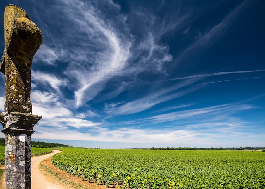 Romanee Conti Vineyard, France