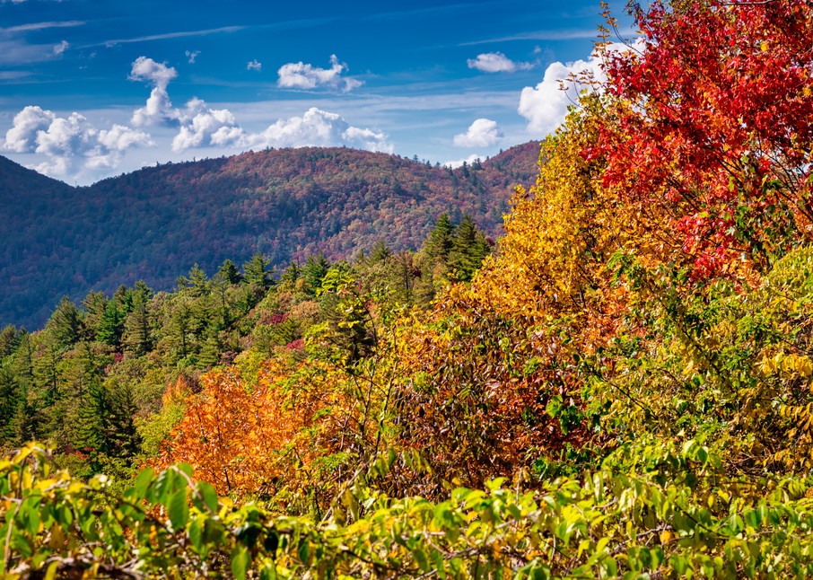 Smoky Mountains Autumn Photography Art | Grace Fine Art Photography by Beth Sheridan