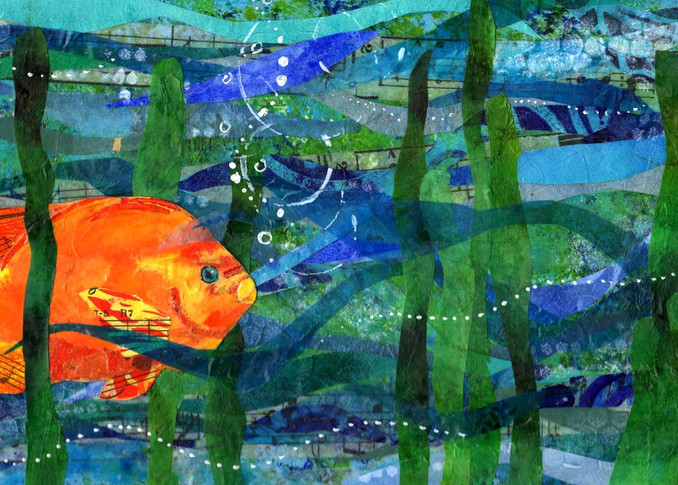 California Poppyfish Art | Poppyfish Studio