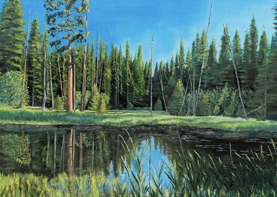 Lily Pond 2 Art   Dave Fox Studios