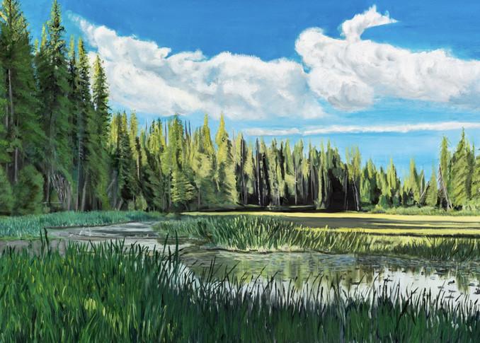 Ponderosa State Park Art | Dave Fox Studios