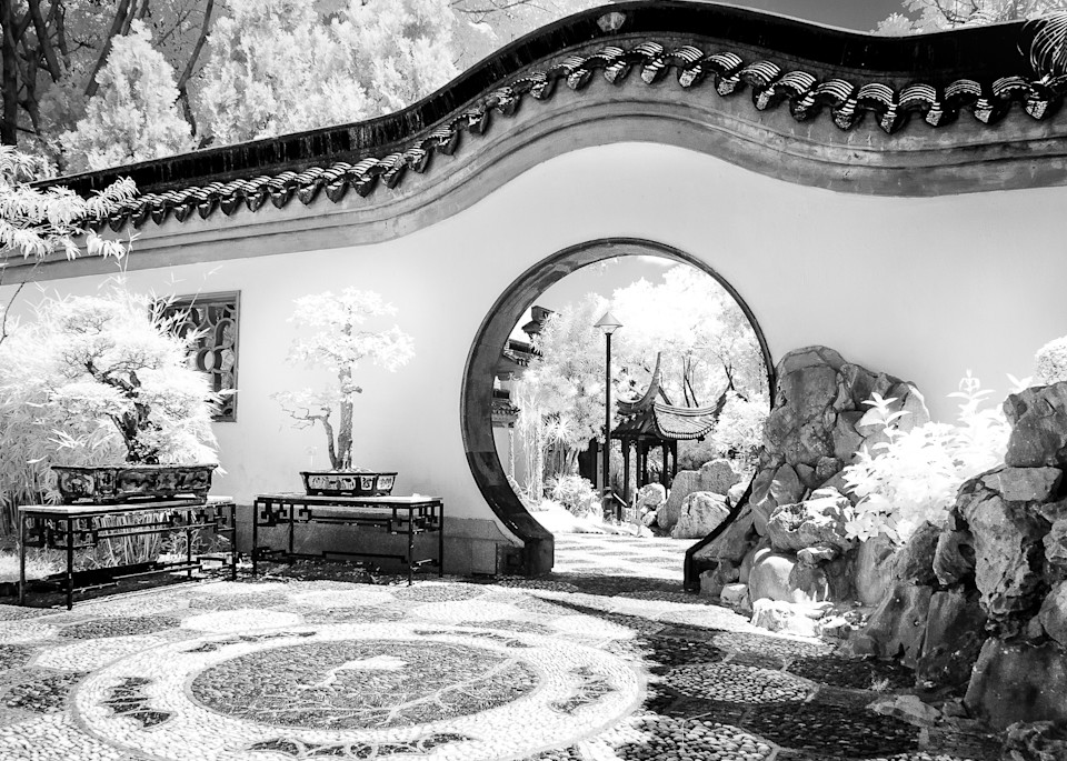 Walled Garden Hong Kong Photography Art | The World in Black and White