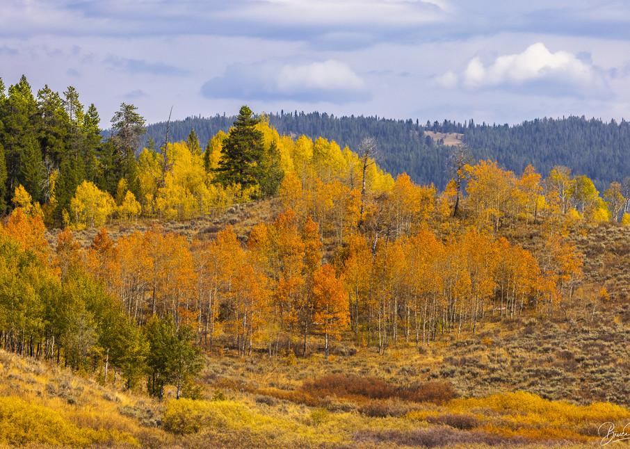 Autumn in the Tetons