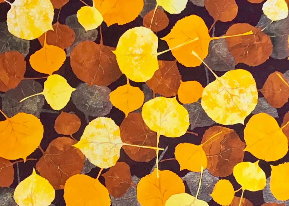 Shimmering Aspen Leaves Art   Mickey La Fave