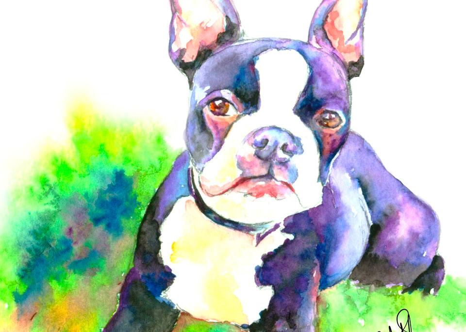 Boston Bulldog Puppy Original Watercolor Print
