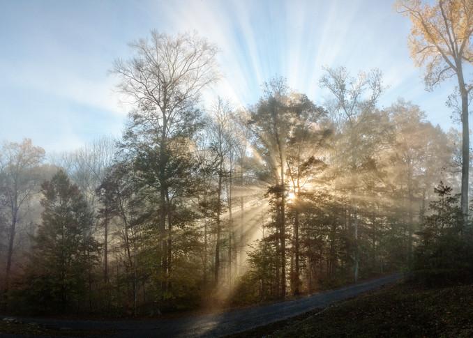 Morning Has Broken Photography Art | templeimagery
