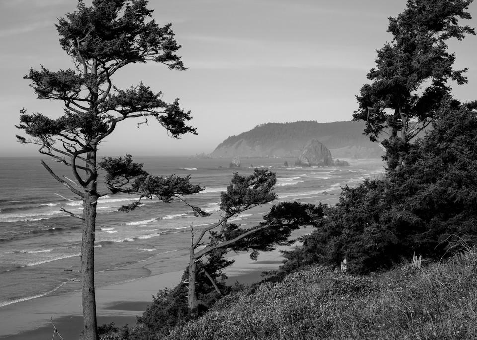 Pacific Ocean, Cannon Beach, Oregon, 2020