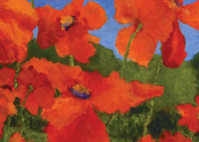 Poppiesnearthemarshnoborder Art | Dawn Boyer Fine Art