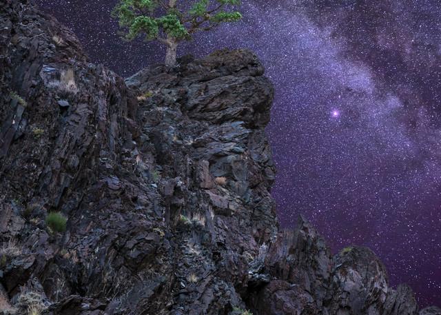 Lone Pine Cliff Photography Art | Josh Kimball Photography