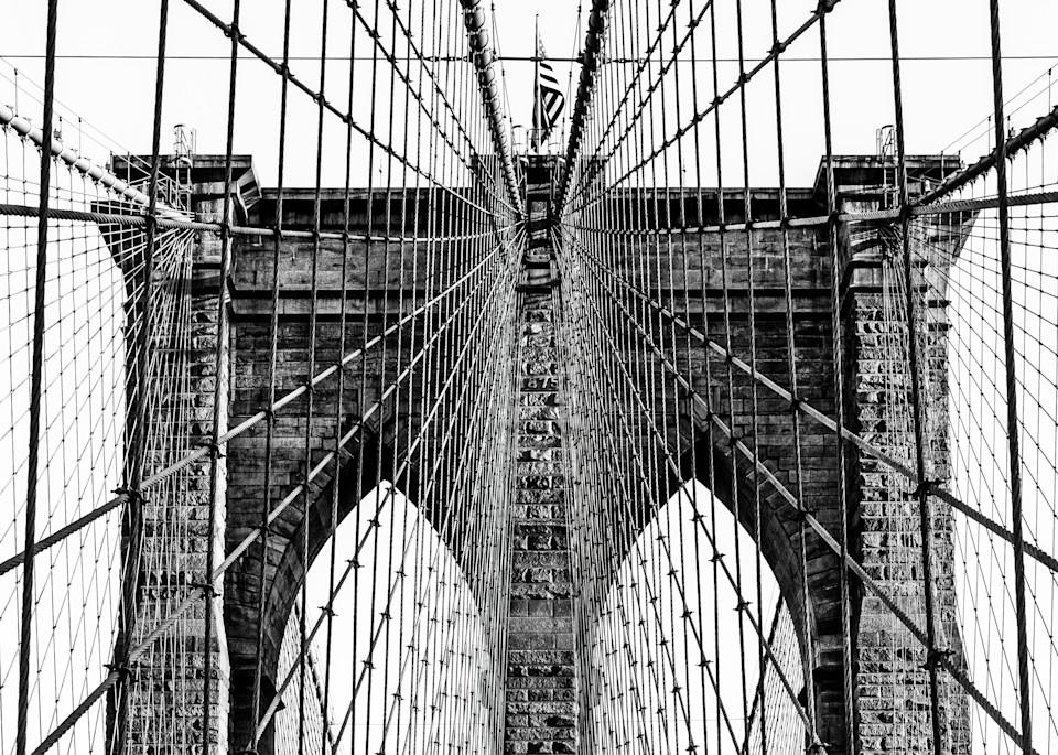 Web Over Brooklyn Art Print