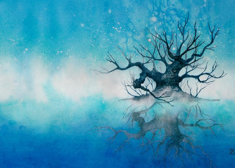 Serenity Art | victoriabishop.art