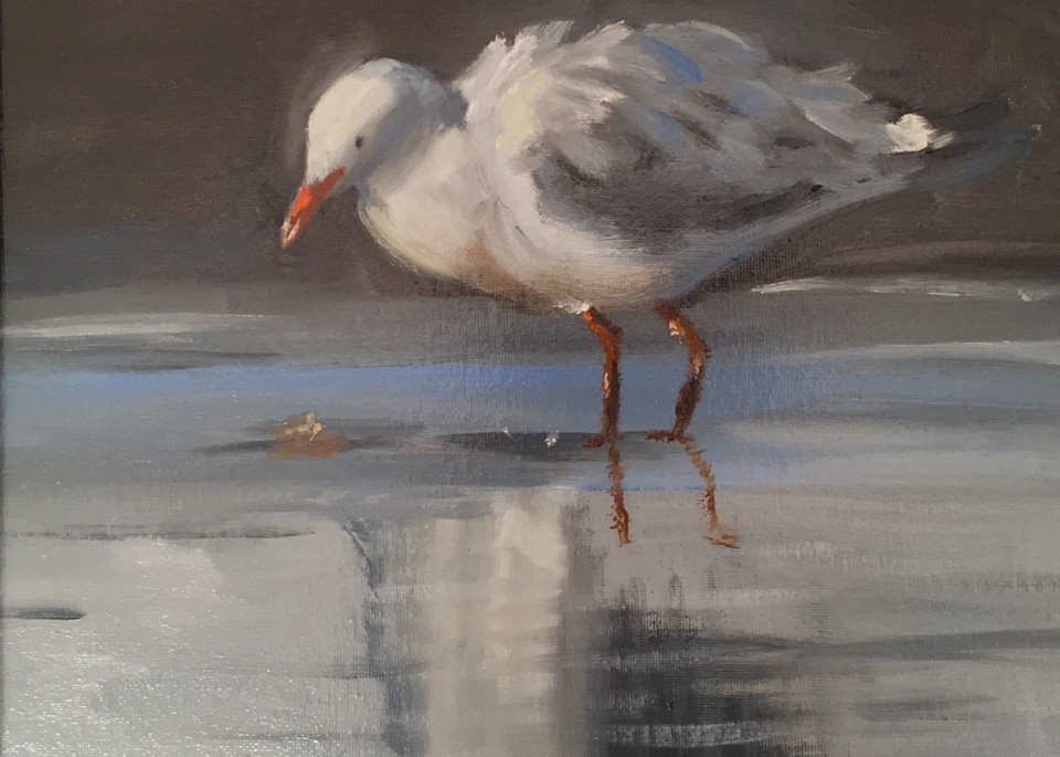 Jonathan Seagull   Original Sold But Available As Art Print Art | Scott Dyer Fine Art
