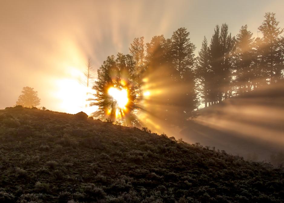 Light Life Photography Art   Colorado Born Images