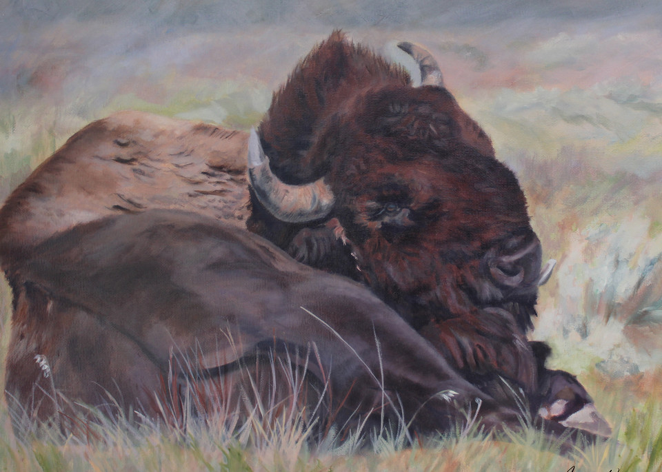 Lazy Buffalo Day Art | Aubrey Kyle Creates