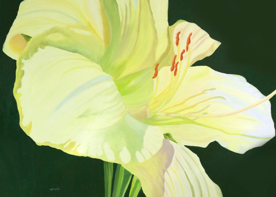 Luminance Art | Pearl White Studio