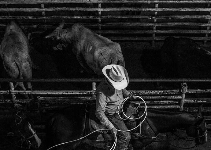 Lasso Photography Art | Harry John Kerker Photo Artist