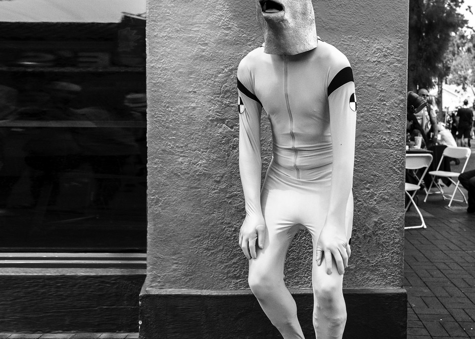 Deer In The Headlights Photography Art | Harry John Kerker Photo Artist