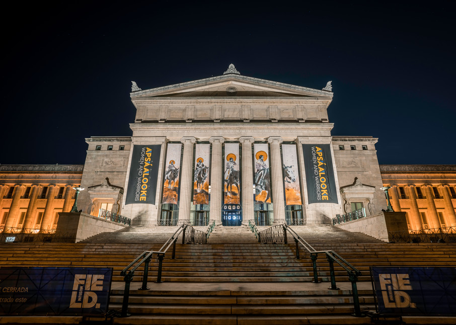 The Field Museum In Chicago Photography Art | William Drew Photography