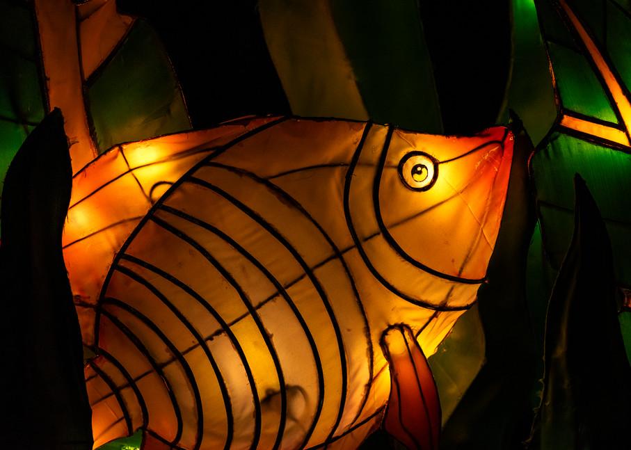 Fish lantern sculpture