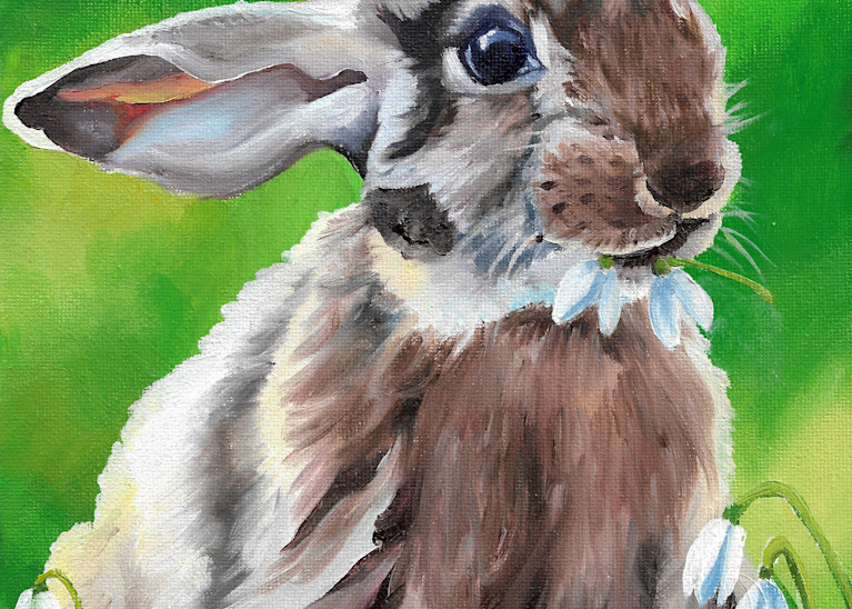 Thumper Bunny | Brittany Selfe