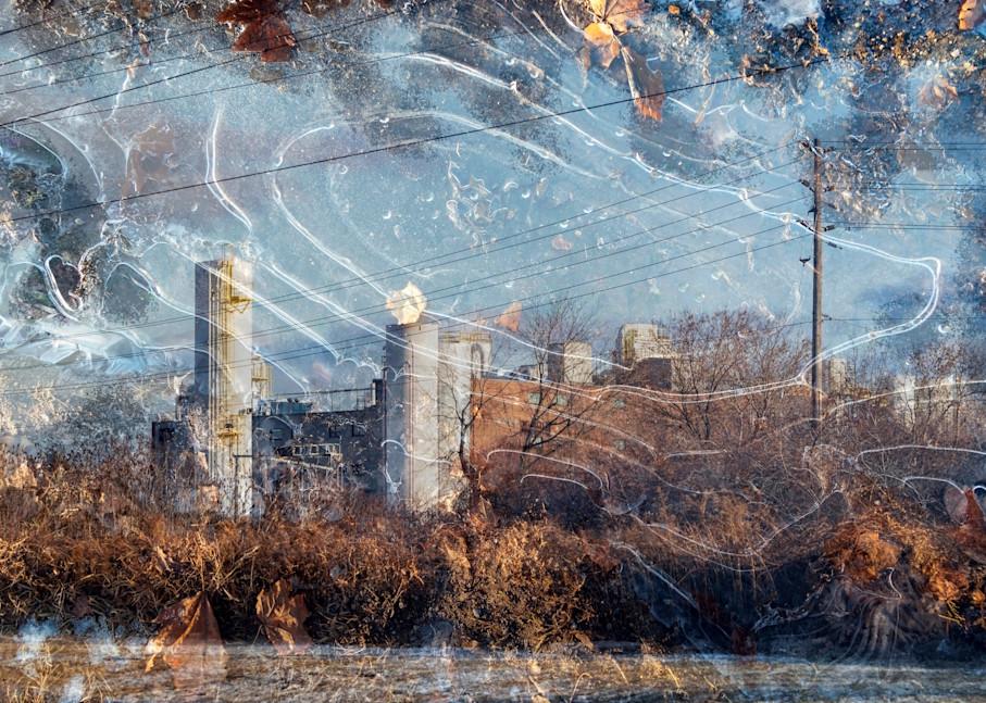 Neighbourhood Photography Art | Elizabeth Stanton Photography