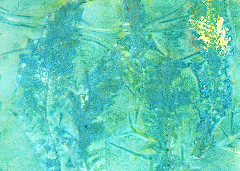 Teal Fern Art | Courtney Miller Bellairs Artist