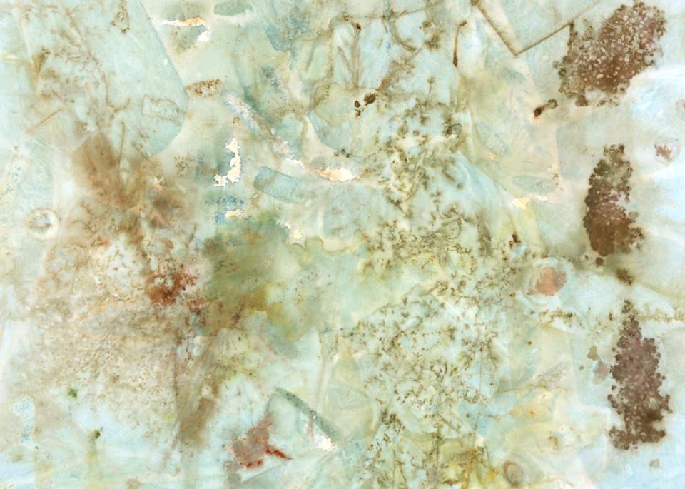 Natural Art | Courtney Miller Bellairs Artist