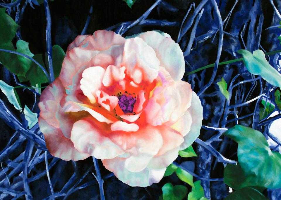Coral Denim Art | Cindy Avroch Fine Art & Design