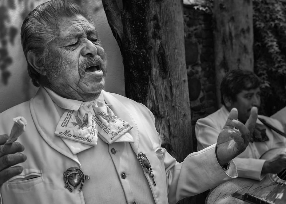 Fingiendo Pasión Photography Art | Harry John Kerker Photo Artist