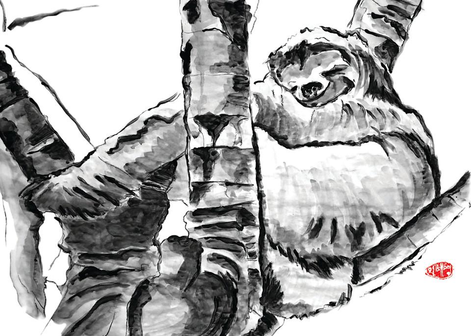 Costa: Sloth Art | Youngi-Sumistyle pets