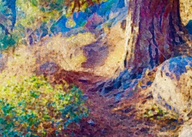 Meadow Camp Trail Art   Scott Dyer Fine Art