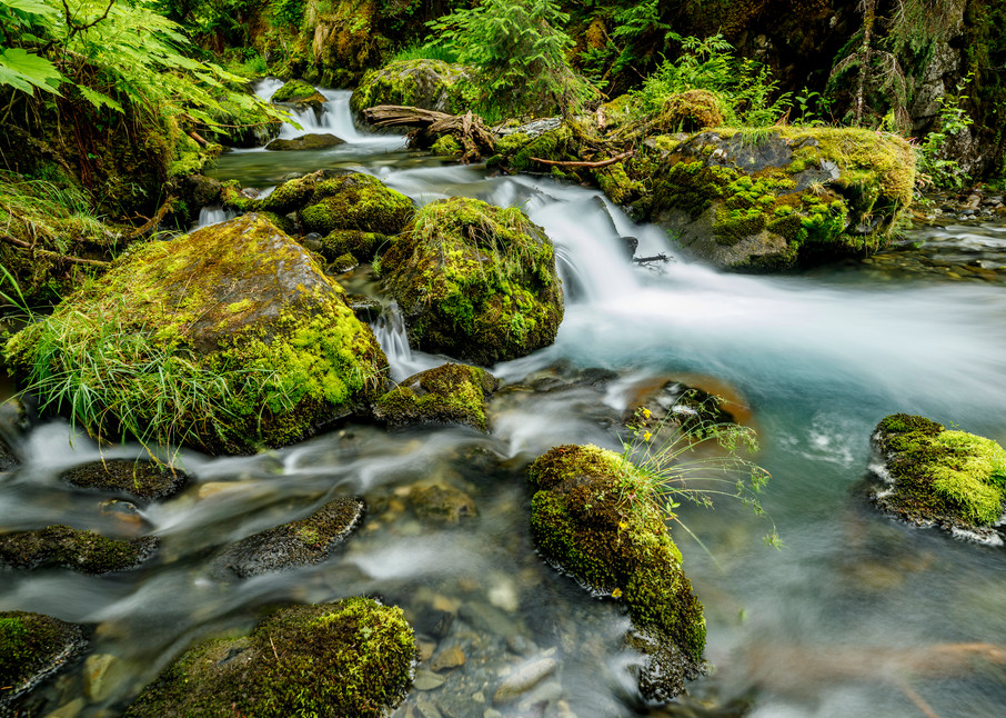 Summer landscape of virgin creek and falls in Chugach Natioinal Forest  Southcentral, Alaska  Girdwood  Photo by Jeff Schultz/  (C) 2020  ALL RIGHTS RESERVED TEACHING... no polarizer fast shutter vs. slow shutter.