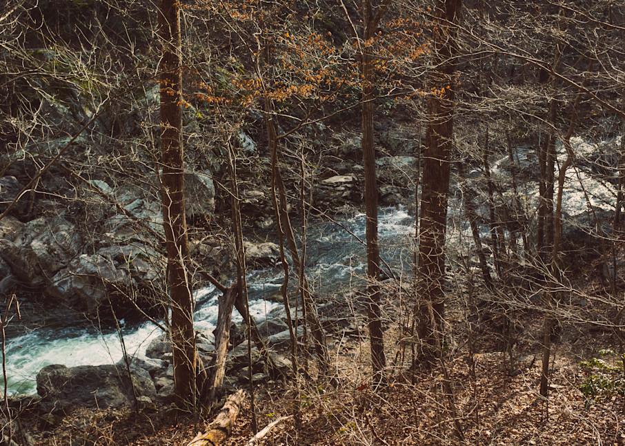 Nature Color 8375 Photography Art | Dan Chung Fine Art