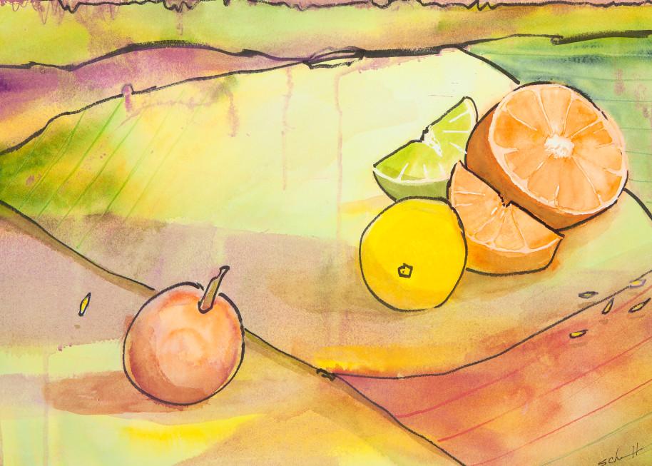 Citrus Art   Elaine Schaefer Hudson Art