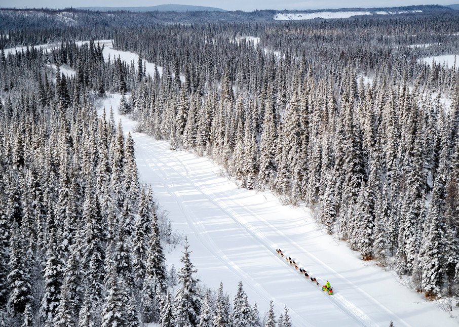 Monica Zappa runs down a slough with snow-covered spruce trees lining the banks in the afternoon on her way to the McGrath checkpoint during the 2018 Iditarod race on Wednesday March 07, 2018.   Photo by Jeff Schultz/SchultzPhoto.com  (C) 2018  AL