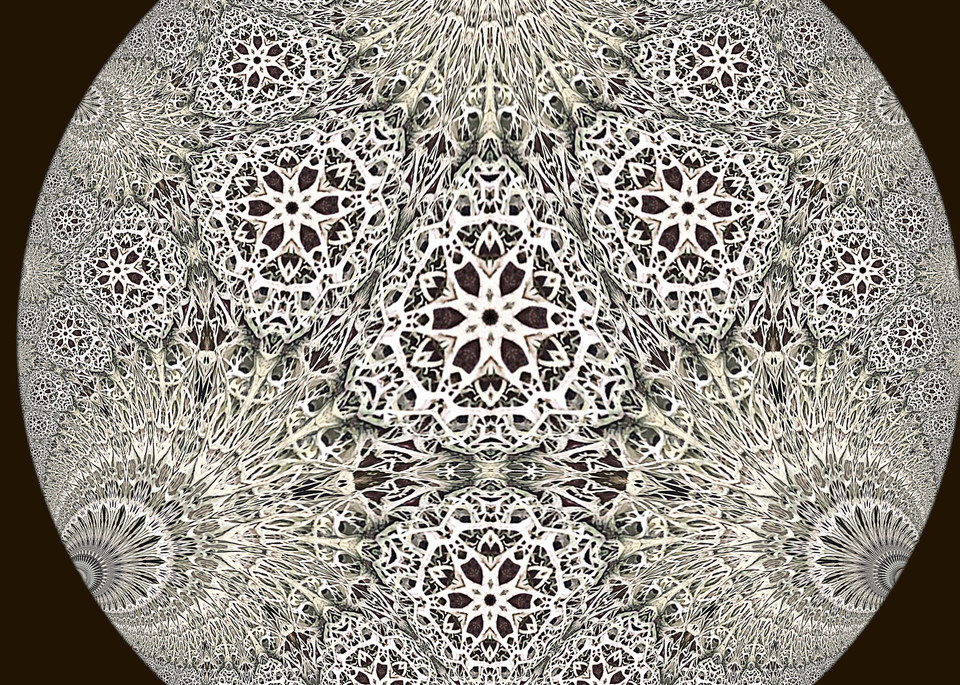 Hyperbolic Lichen 1a