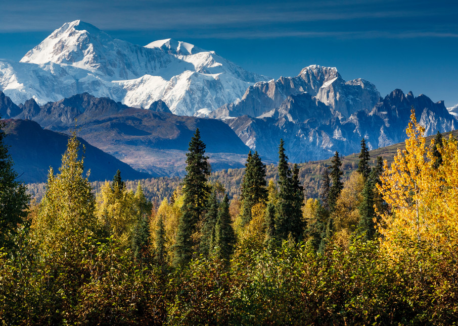 Southside view of Mt. Mckinley and Alaska range from Park Highway  fall  Southcentral, Alaska