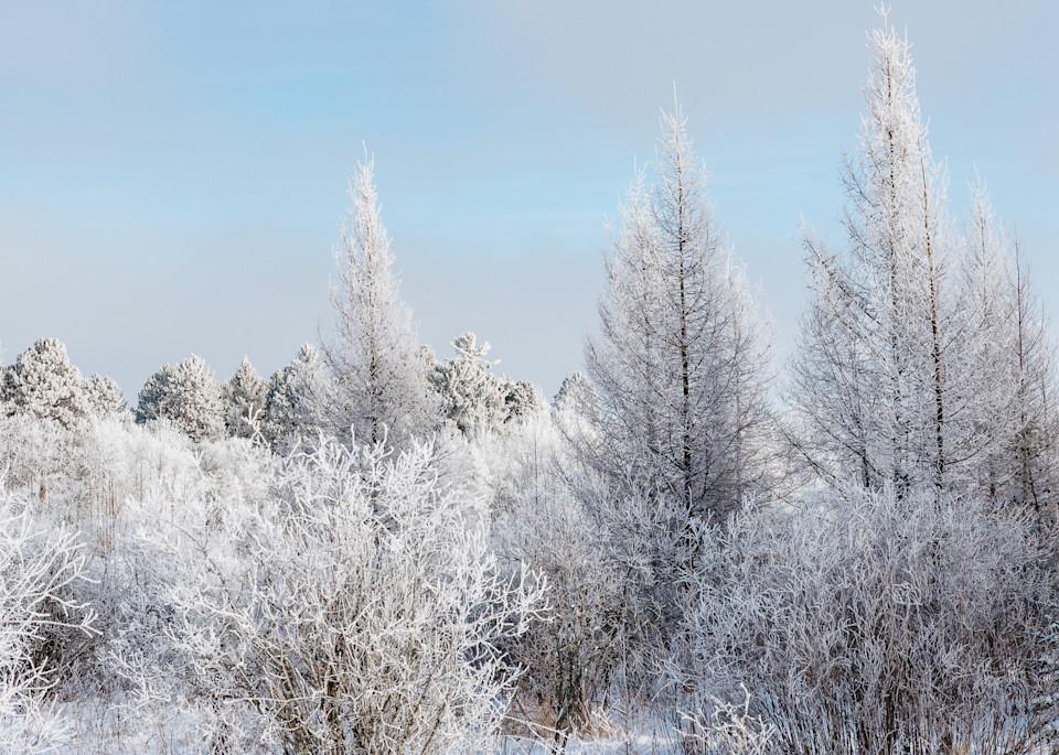 Winter Field Blue   Art | studio176