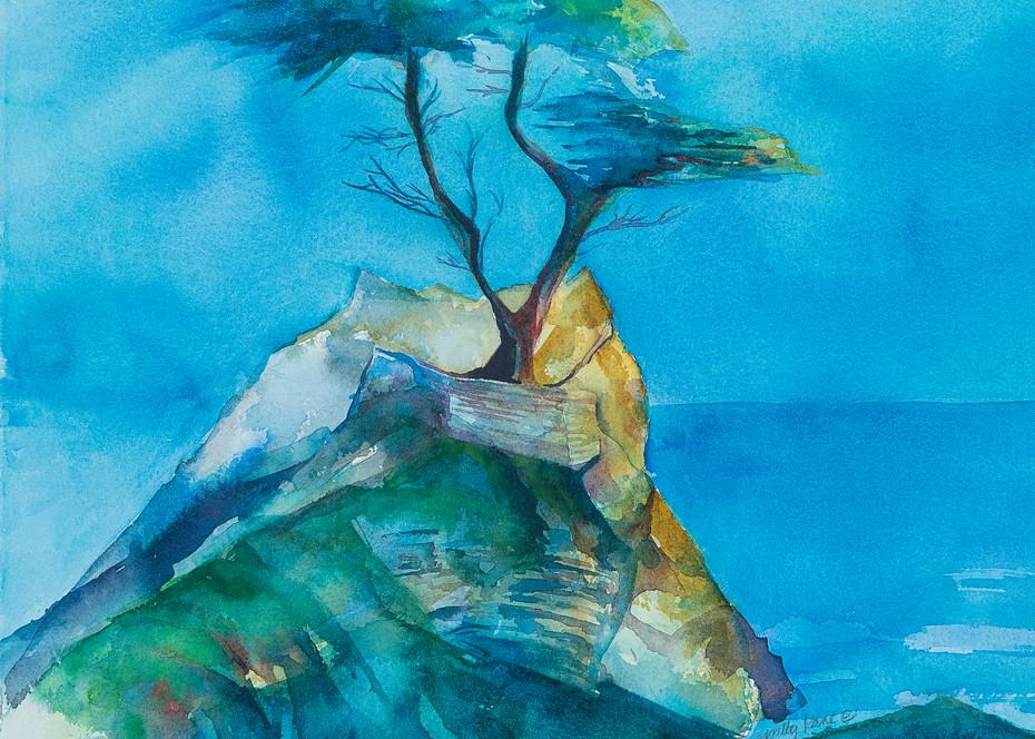 A Lone Cypress Art | ArtByPattyKane