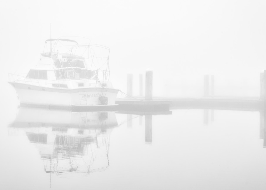 Calm - Foggy St. Johns River fine-art photography prints