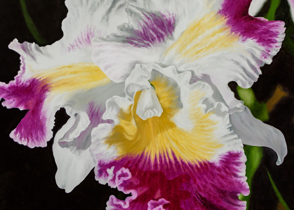 Orchid   Products Art | Mercedes Fine Art