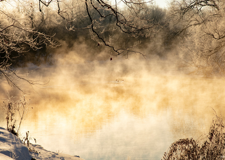 Disappearing  Ducks On Steamy Spring River With Ice 3389 Art   Koral Martin Fine Art Photography
