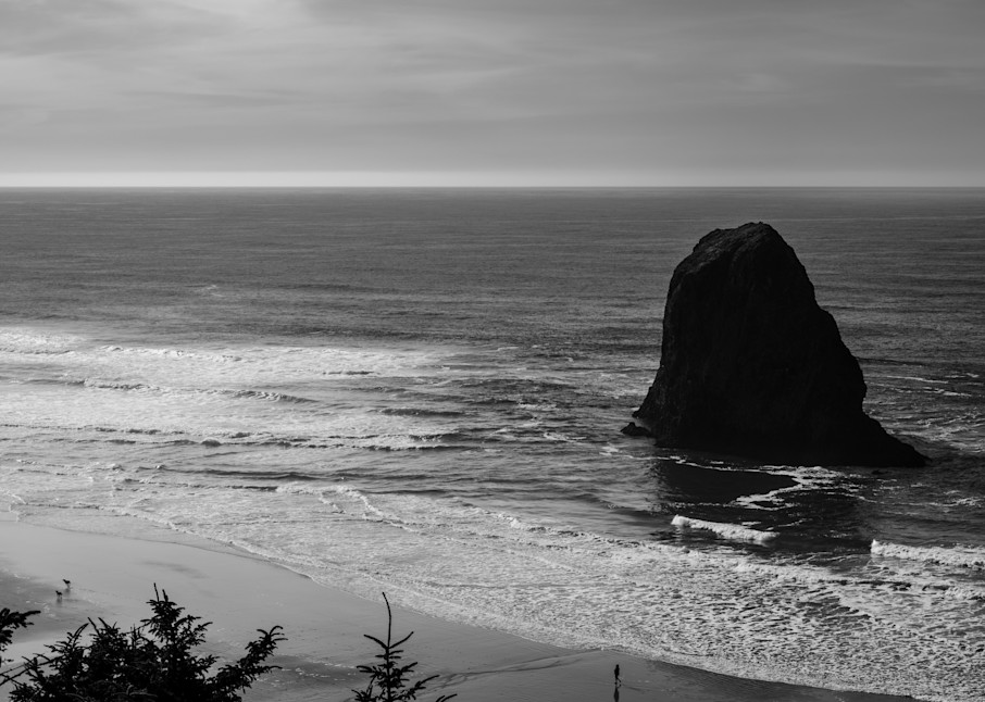 Ocean Views, Oregon, 2020