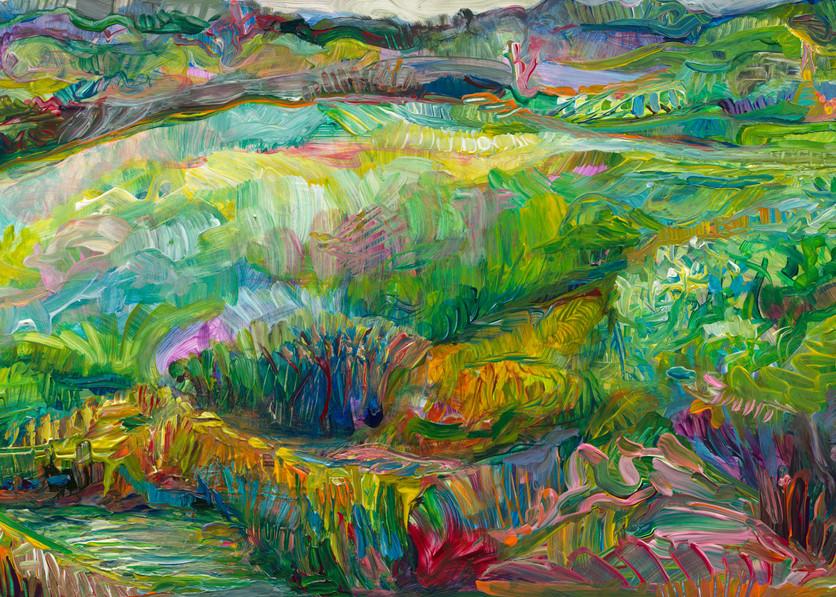 Velvet Marshland