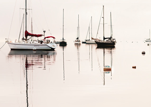 Belfast Harbor Photography Art | Felice Willat Photography